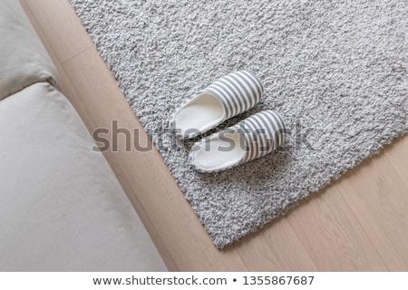 Otthon házi cipők pár színes csíkos fehér Stock fotó © dezign56