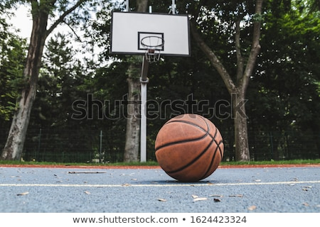 outdoor park basketball hoop stock photo © latent