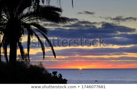 sunset in costa del silencio tenerife canary islands spain stock photo © amok