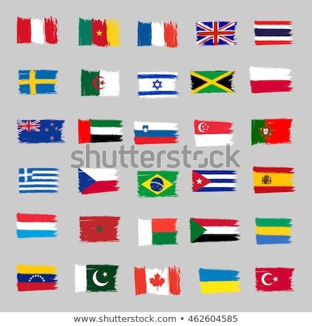 Brezilya Cezayir bayraklar bilmece yalıtılmış beyaz Stok fotoğraf © Istanbul2009