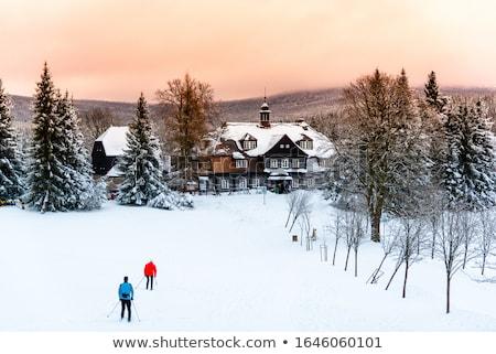 古い · 木製 · 小屋 · カバー · 雪 · 冬 - ストックフォト © kotenko