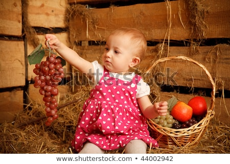 Little girl is sitting on pile of straw with grapes in their hands. Behing fruit basket. Stock photo © Paha_L