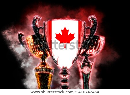 Trophy cup textured with flag of Canada. Digital illustration Stock photo © Kirill_M
