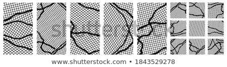Folleto monocromo células fondos negocios diseno Foto stock © sdmix