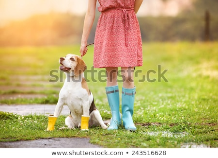 Happy woman running and playing with her dog on lead Stock photo © deandrobot