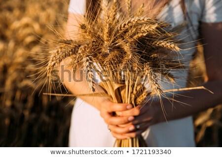 mooie · mode · bruid · meisje · trouwjurk · zomer - stockfoto © iserg