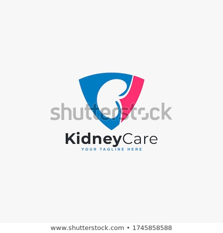 Urinary bladder protection abstract design Stock photo © Tefi