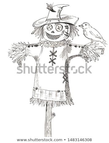 scarecrow in autumn Stock photo © adrenalina