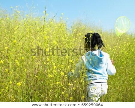 Menina com campo flores natureza Foto stock © IS2