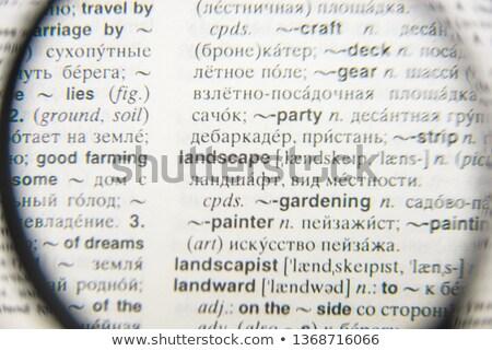 Dictionnaire page loupe livre verre amis Photo stock © wavebreak_media