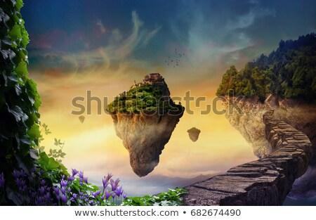 Flutuante ilha castelo colorido ilustração em pé Foto stock © lenm