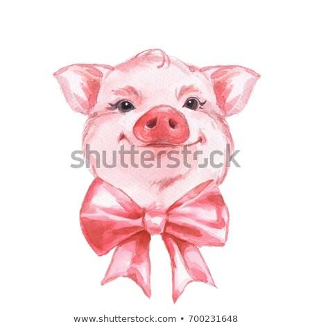 Porco rosa aquarela bonitinho símbolo chinês Foto stock © Artspace