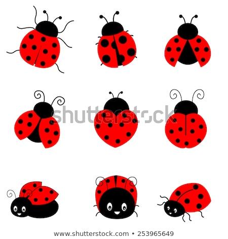 Küçük böcek sevmek karikatür örnek mutlu Stok fotoğraf © cthoman