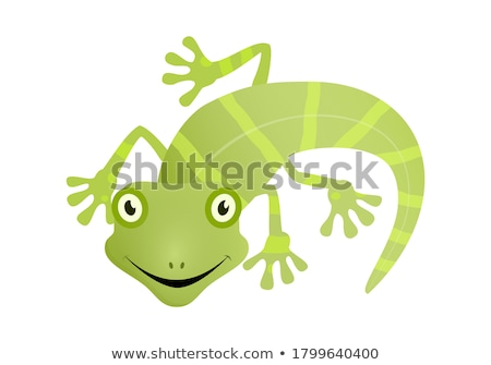 Gecko Cartoon Character Mascot Design stock photo © ridjam