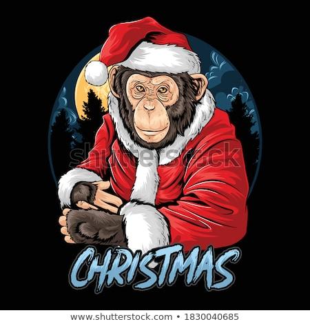 Karikatür gülen kış şempanze mutlu Stok fotoğraf © cthoman