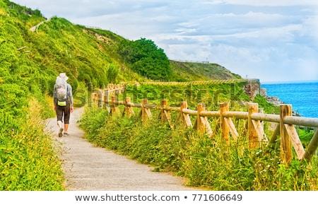 Yürüyüş İspanya adam ağaç yol spor Stok fotoğraf © pedrosala