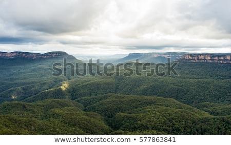 Misty light Blue Mountains Australia Stock photo © lovleah