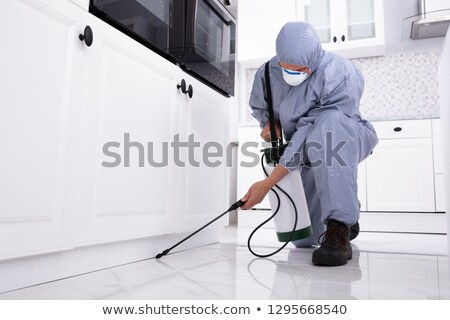 Pest Control Worker Spraying Pesticide On White Cabinet Stock photo © AndreyPopov