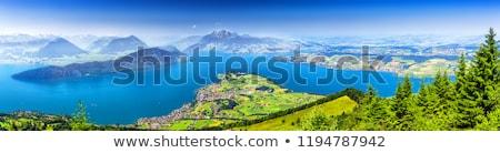 Widoku alpy trawy krajobraz górskich zielone Zdjęcia stock © boggy
