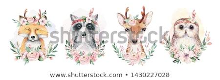 Szett vadvilág állatok illusztráció nyúl háttér Stock fotó © bluering