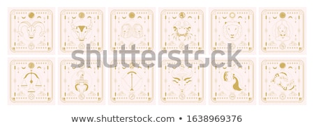 Stock photo: Zodiac icon set vector pattern