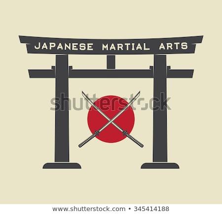 Japonés espada icono color diseno guerra Foto stock © angelp