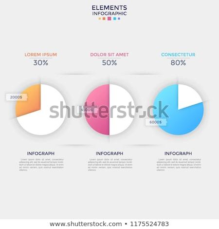 Taart diagram percentage informatie vector statistiek Stockfoto © robuart