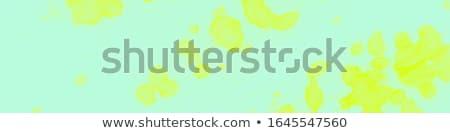 szezonális · ajánlat · kék · vektor · ikon · terv - stock fotó © articular