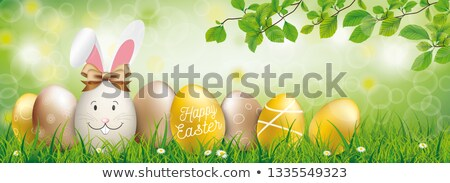Stok fotoğraf: Golden Happy Easter Eggs Hare Ears Green Bokeh Grass Header
