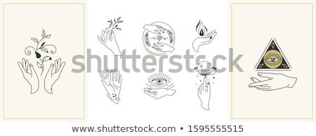 Ayarlamak farklı çiçekler bitkiler kalpler stil Stok fotoğraf © Arkadivna