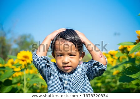 happy boy on a field of sunflowers on summer sunset stock photo © lopolo