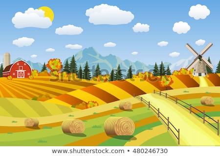 Ranch tracteur rural campagne vecteur agricole Photo stock © robuart