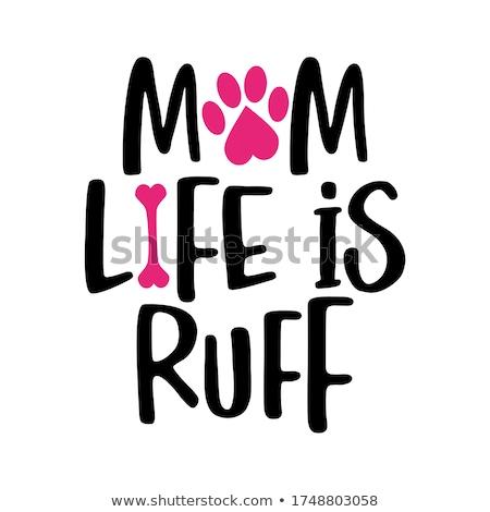 мамы жизни слов собака след смешные Сток-фото © Zsuskaa