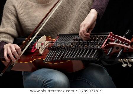 Female musician tuning her modern nyckelharpa Stock photo © Giulio_Fornasar