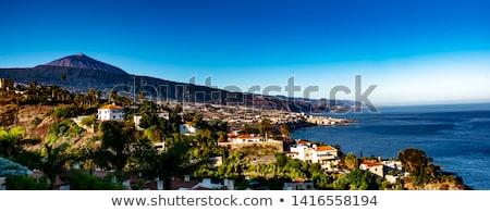 tenerife · okyanus · sahil · büyük · şehir - stok fotoğraf © rognar