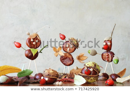 Fun acorns and leaves with chestnuts. Stock photo © lypnyk2