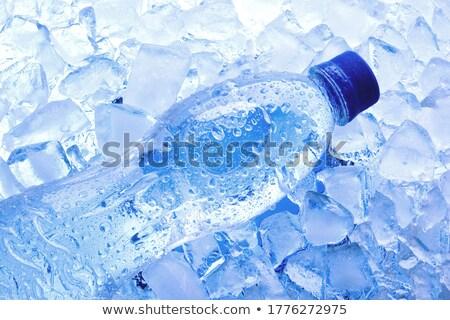 Fles water ijs zwarte leven schone Stockfoto © Raduntsev
