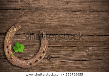 st patricks horse shoe Stock photo © pathakdesigner