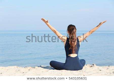 женщину · рабочих · пляж · расслабляющая · используя · ноутбук - Сток-фото © zastavkin