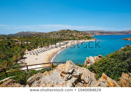 Palmiye plaj nehir ahşap güney Yunanistan Stok fotoğraf © michey