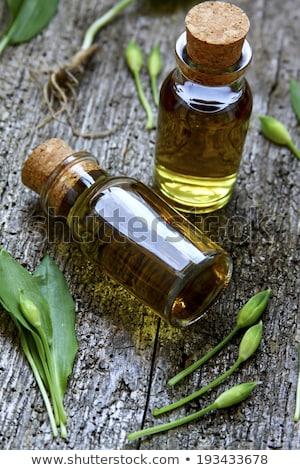 wild · knoflook · fles · natuur · planten · kruiden - stockfoto © joker