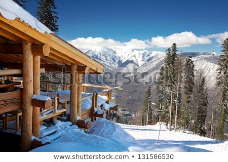 Wooden log cabin in the European Alps Stock photo © Bertl123
