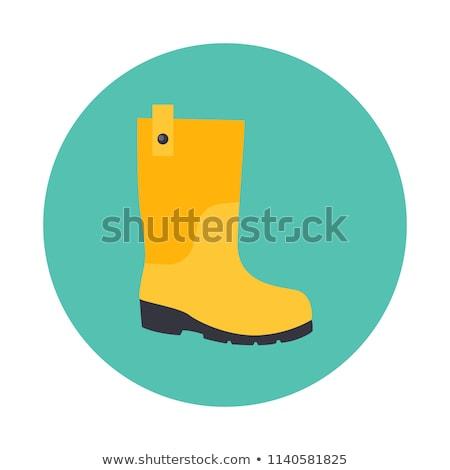 Vector icon rainboots Stock photo © zzve