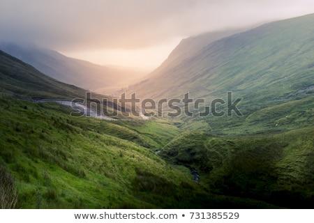 beautiful scenic rural landscape from ireland Stock photo © mady70
