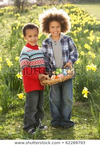 Iki erkek easter egg hunt nergis alan çocuklar Stok fotoğraf © monkey_business