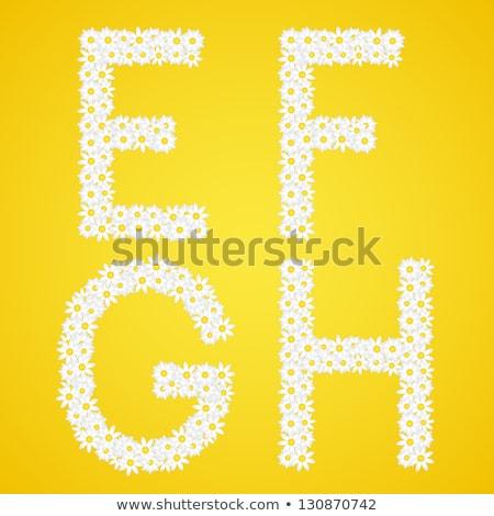 Lettres Daisy fleurs alphabet galerie Photo stock © liliwhite