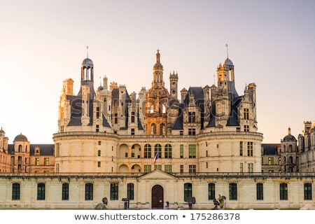 Pinnacle on the roof of the chateau of Chambord Stock photo © wjarek