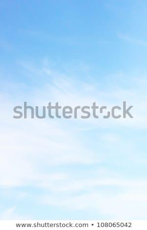 Kék ég felhők szép nyár nap tájkép Stock fotó © BSANI