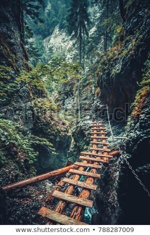 опасный горные пути фотография трудный путешествия Сток-фото © 1Tomm