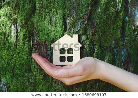 Symbool hand zon home wereld Stockfoto © rufous